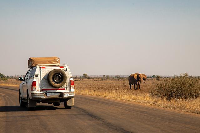 Top 3 des destinations à parcourir en road trip en Afrique